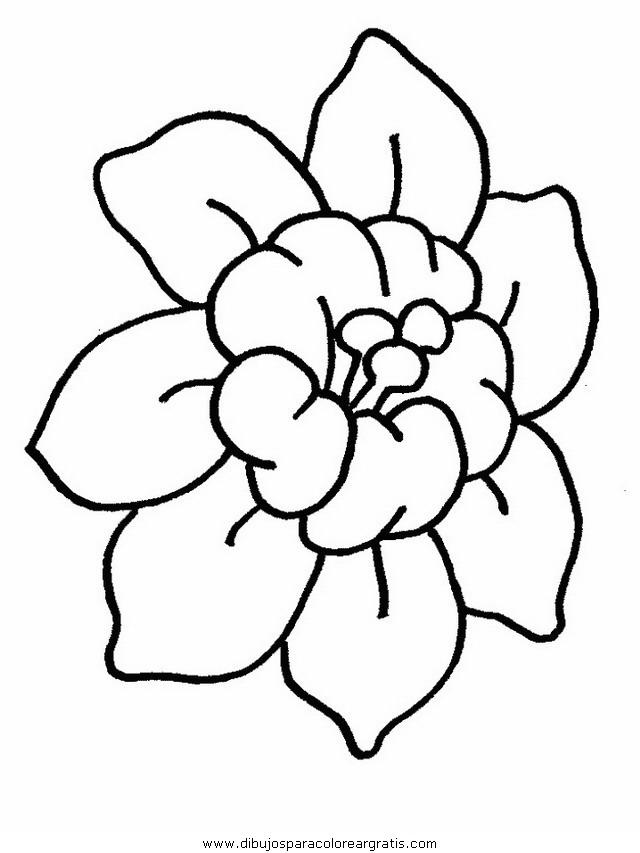 naturaleza/flores/flores_106.JPG