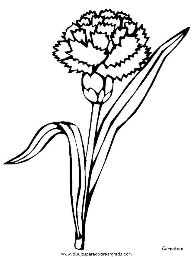 naturaleza/flores/flores_129.JPG