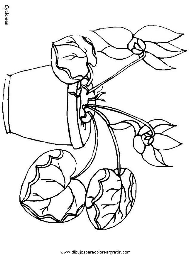 naturaleza/flores/flores_132.JPG