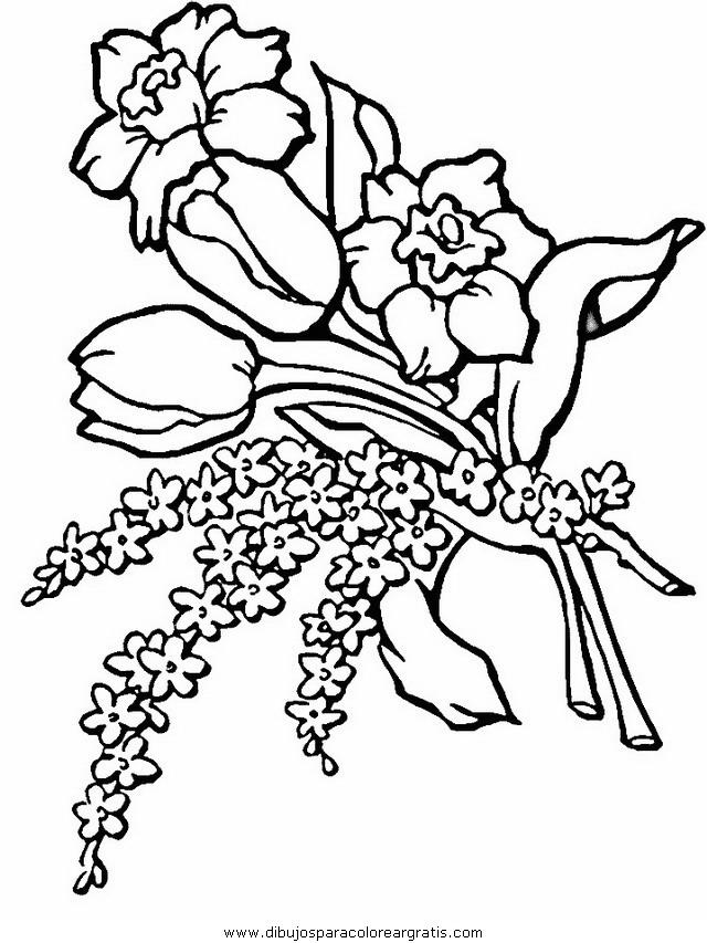naturaleza/flores/flores_138.JPG