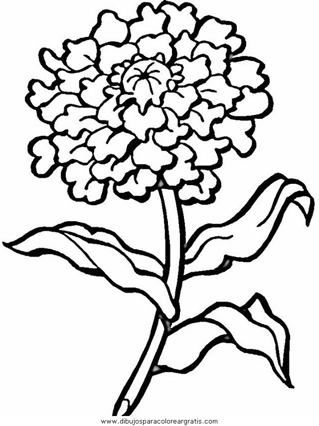 naturaleza/flores/flores_139.JPG