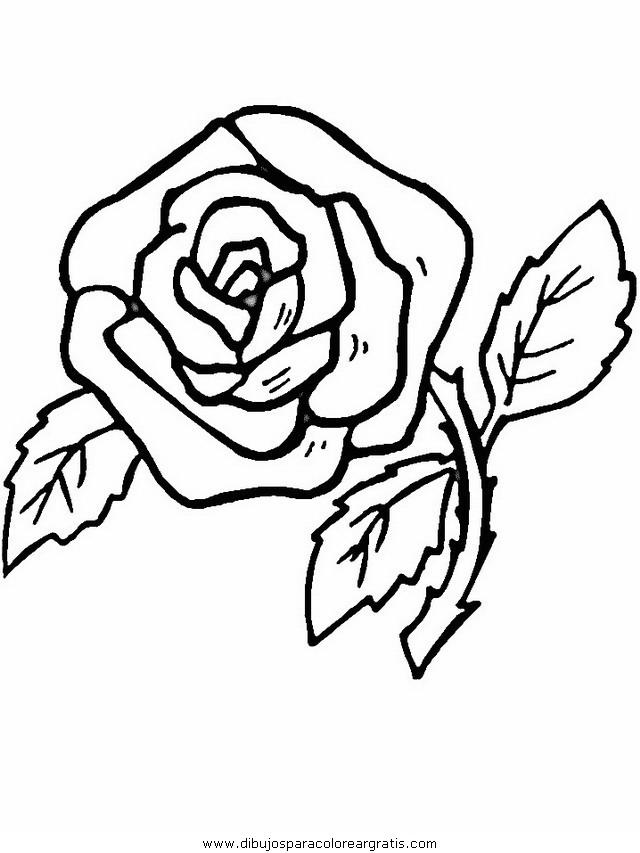 naturaleza/flores/flores_141.JPG