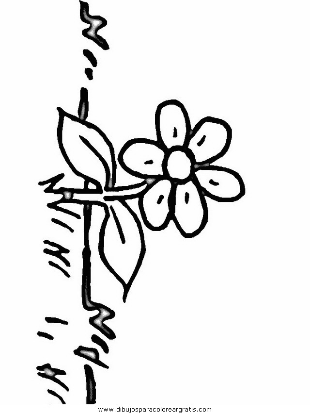 naturaleza/flores/flores_143.JPG
