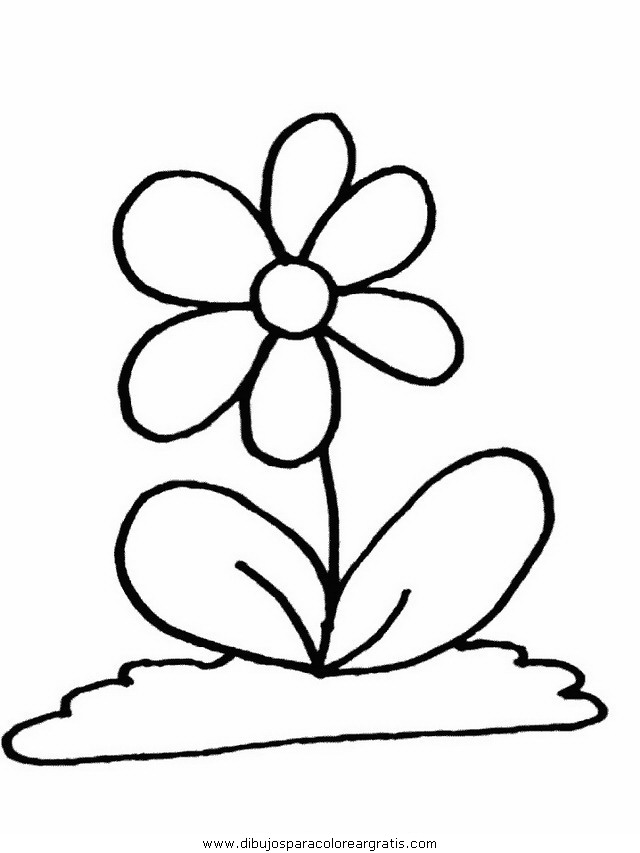 naturaleza/flores/flores_148.JPG