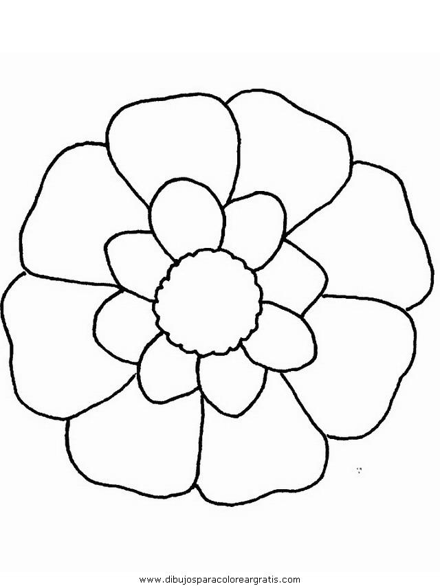 naturaleza/flores/flores_150.JPG