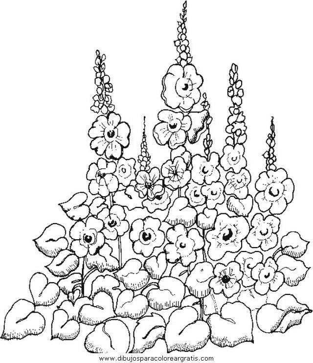 naturaleza/flores/flores_179.JPG
