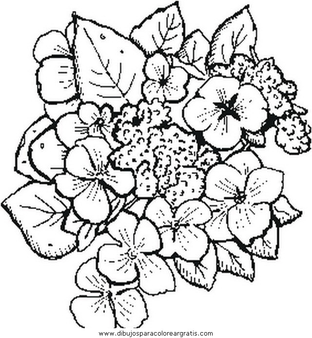 naturaleza/flores/flores_180.JPG