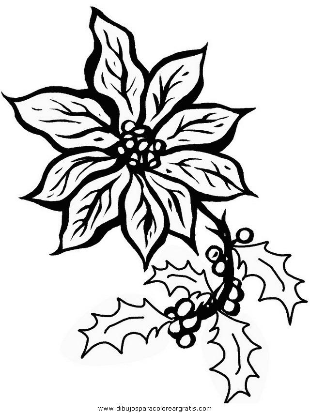 naturaleza/flores/flores_187.JPG