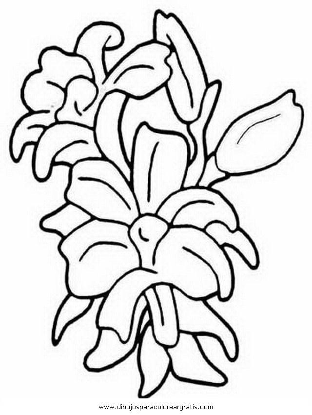 naturaleza/flores/gladiolo_gladiolos.JPG