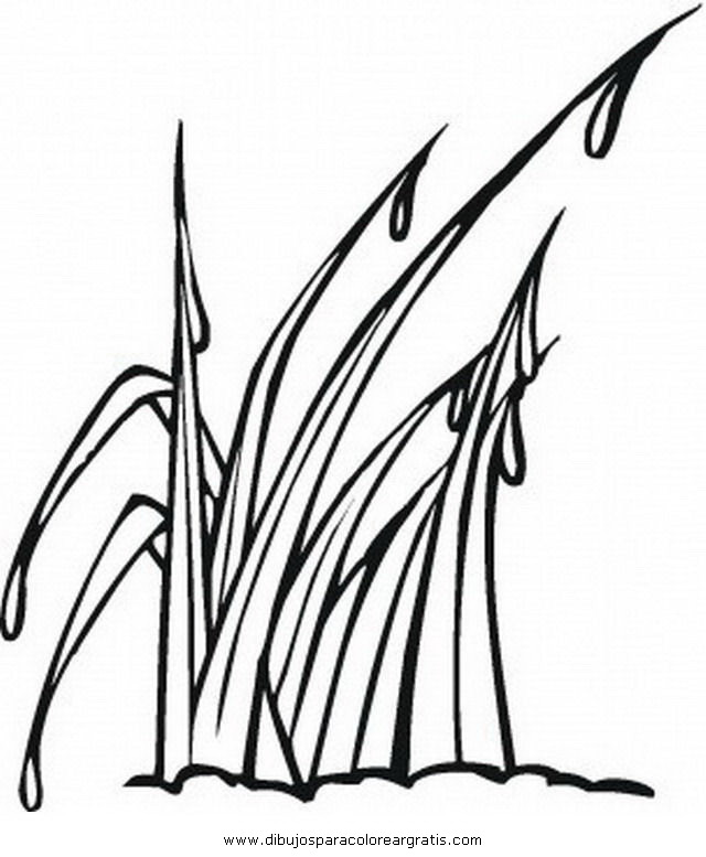 Free Grass For Coloring Pages