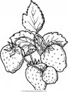 alimentos/fruta/fruta_91.JPG
