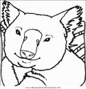 animales/animales_varios/animales_varios_029.JPG