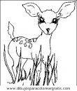 animales/animales_varios/animales_varios_040.JPG