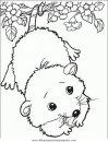animales/animales_varios/animales_varios_084.JPG