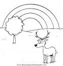 animales/animales_varios/animales_varios_120.JPG