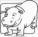 animales/animales_varios/animales_varios_124.JPG