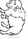 animales/animales_varios/bisonte_bisontes_37.JPG
