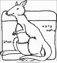 animales/canguros/canguros_48.JPG
