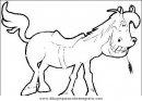 animales/cavallos/cavallos_14.JPG