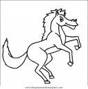 animales/cavallos/cavallos_17.JPG