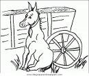 animales/cavallos/cavallos_41.JPG