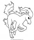 animales/cavallos/cavallos_50.JPG