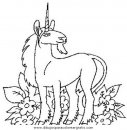 animales/cavallos/cavallos_79.JPG