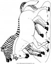 animales/cebras/cebras_00.JPG