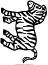 animales/cebras/cebras_04.JPG