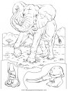 animales/elefantes/elefantes_14.JPG