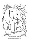 animales/elefantes/elefantes_26.JPG