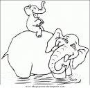 animales/elefantes/elefantes_37.JPG