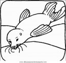 animales/focas/focas_14.JPG