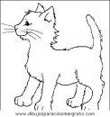 animales/gatos/gatos_023.JPG