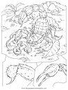 animales/insectos/alacran_1.JPG