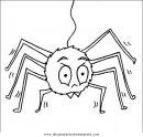 animales/insectos/aranas_03.JPG