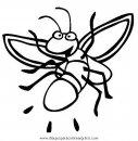 animales/insectos/luciernagas_1.JPG