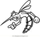 animales/insectos/zancudo_4.JPG