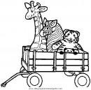 animales/jirafas/jirafas_11.JPG