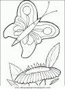 animales/mariposas/mariposas_037.JPG