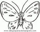 animales/mariposas/mariposas_048.JPG