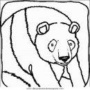animales/osos/osos_017.JPG