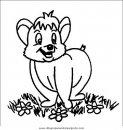animales/osos/osos_019.JPG