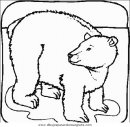 animales/osos/osos_043.JPG