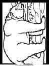 animales/osos/osos_108.JPG