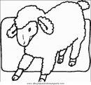 animales/ovejas/ovejas_05.JPG