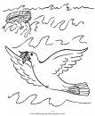 animales/pajaros/paz_8.JPG