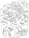 animales/pajaros/uccelli_001.JPG