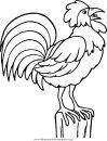 animales/pajaros/uccelli_023.JPG
