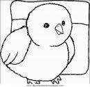 animales/pajaros/uccelli_044.JPG